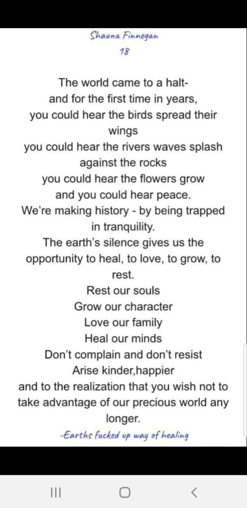 Poem by Shauna Finnegan